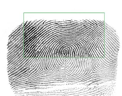 بهینه سازی تصویر خروجی توسط پاپیلون