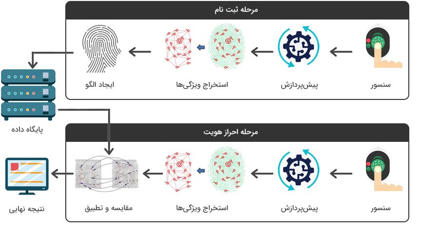 فرآیند ثبت و تطبیق اثر انگشت